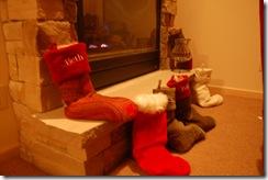 Christmas Week 2008 037