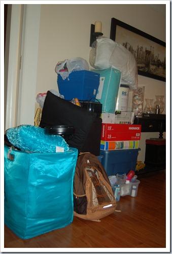 Emily Dorm Pile 002